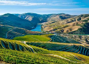 The Douro valley and its vineyards